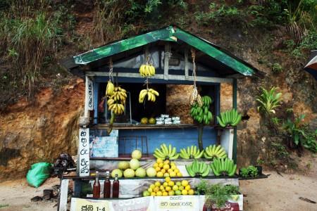 1 negozio di frutta copia