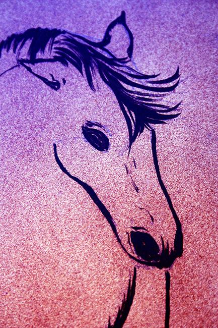 41 piatrella cavallo viola