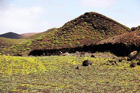 Colori di primavera sui vulcani spenti.