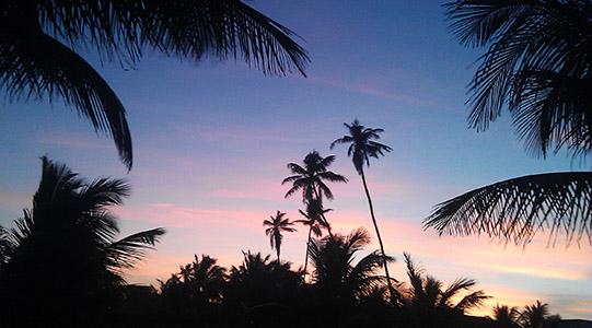 B tramonti brasiliani 2