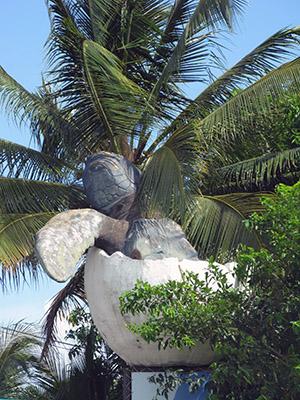 Brasile, Praya do Forte, l'insegna del Centro per la salvaguardia delle tartarughe.