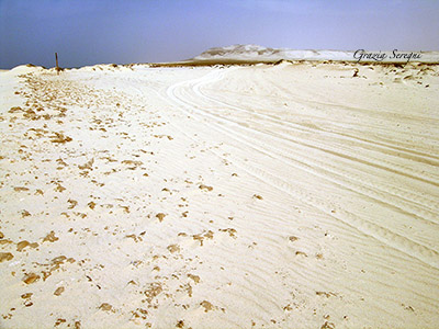 Boa Vista grande spiaggia bianca dunaok copy