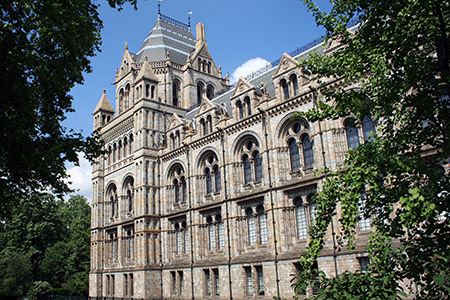 Londra-Museo-di-Scienze-Naturali.