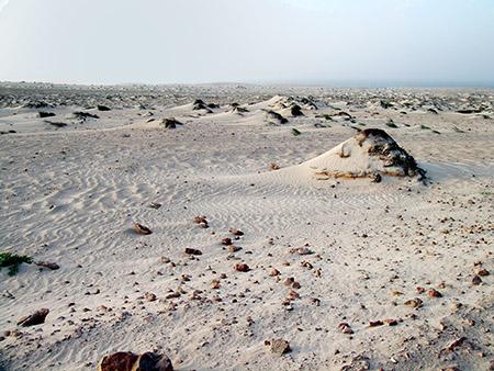 Boa Vista deserto bianc  3 144 (53)