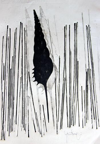 ARTE Grazia 350 conchiglia spaghetti foto