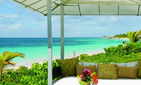 Anguilla mare esotico ok