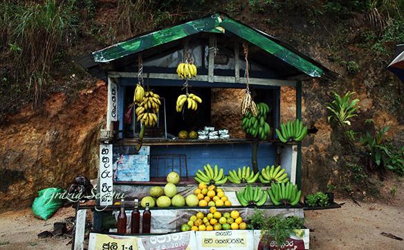 Vacanze per viaggiatori – Best Birmania – Da 1680 euro un viaggio guidato di 7 giorni