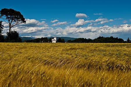 FRIULI giugno 2 Panoramica_Castello_Colloredo_di_Montealbano_Ph_Ulderica_Da_Pozzo2