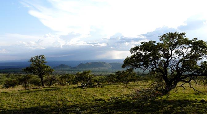 KENYA Africa paesaggio 672 panorama varie africa Riccardo Bettoni P1010515