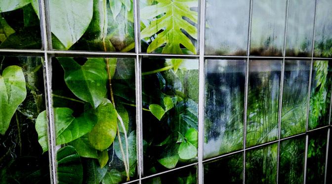 Scuola: la Guida per ridurre consumi di energia e usare fondi green