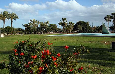 Arrecife: giardini pubblici.