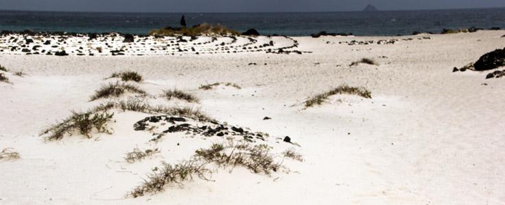 Lanzarote nord. Dune sul mare vicino ad Orzola.