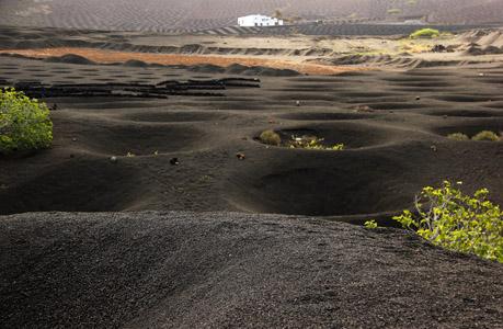 Lanzarote sud. La Geria a nord di Jaiza. Qui l'antica lava, nera calda e ricca di nutrienti, è usata per facilitare la produzione di un vino eccellente.
