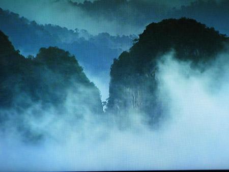 VIETNAM FORESTE MONTI IMG_5372