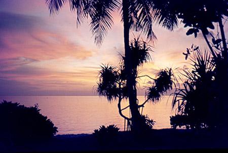 maldive tramonto palme ok