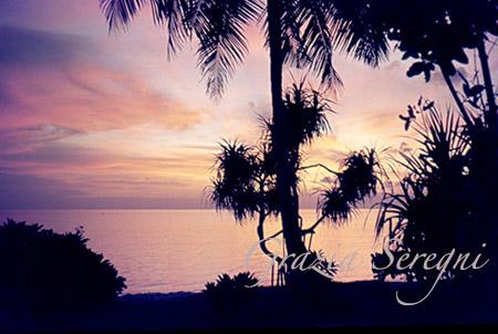 maldive firma tramonto palme ok copy