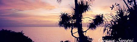 COVER maldive tramonto palme ok