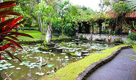 Bali Ubud Museo P.L. entrata kninfee