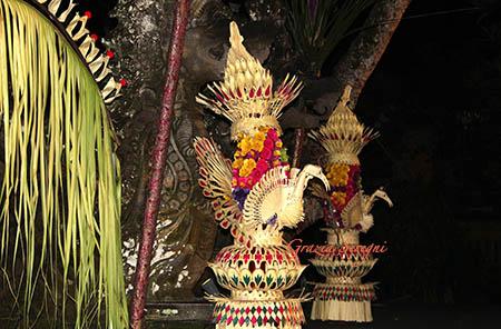 Bali offerte ok szx