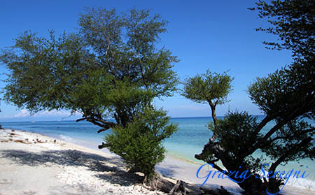 Gili Travangan spiaggia esotico 1c