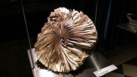 Miniartextil 14 Fossil