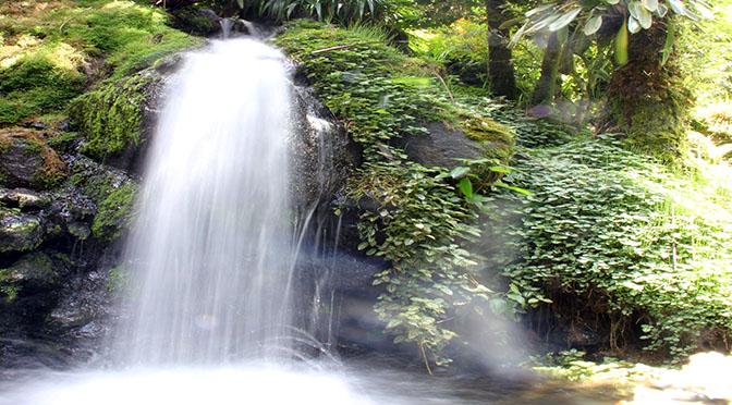 PANAMA 672 acqua cascata ok IMG_0677