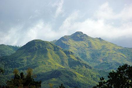 PANAMA montagna foresta IMG_0365