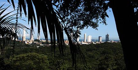 PANAMA IMG_9815