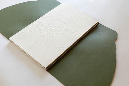 0 450 arte Alessandra Angelini Il Giardino è aperto libro d'artista 2015 (1)