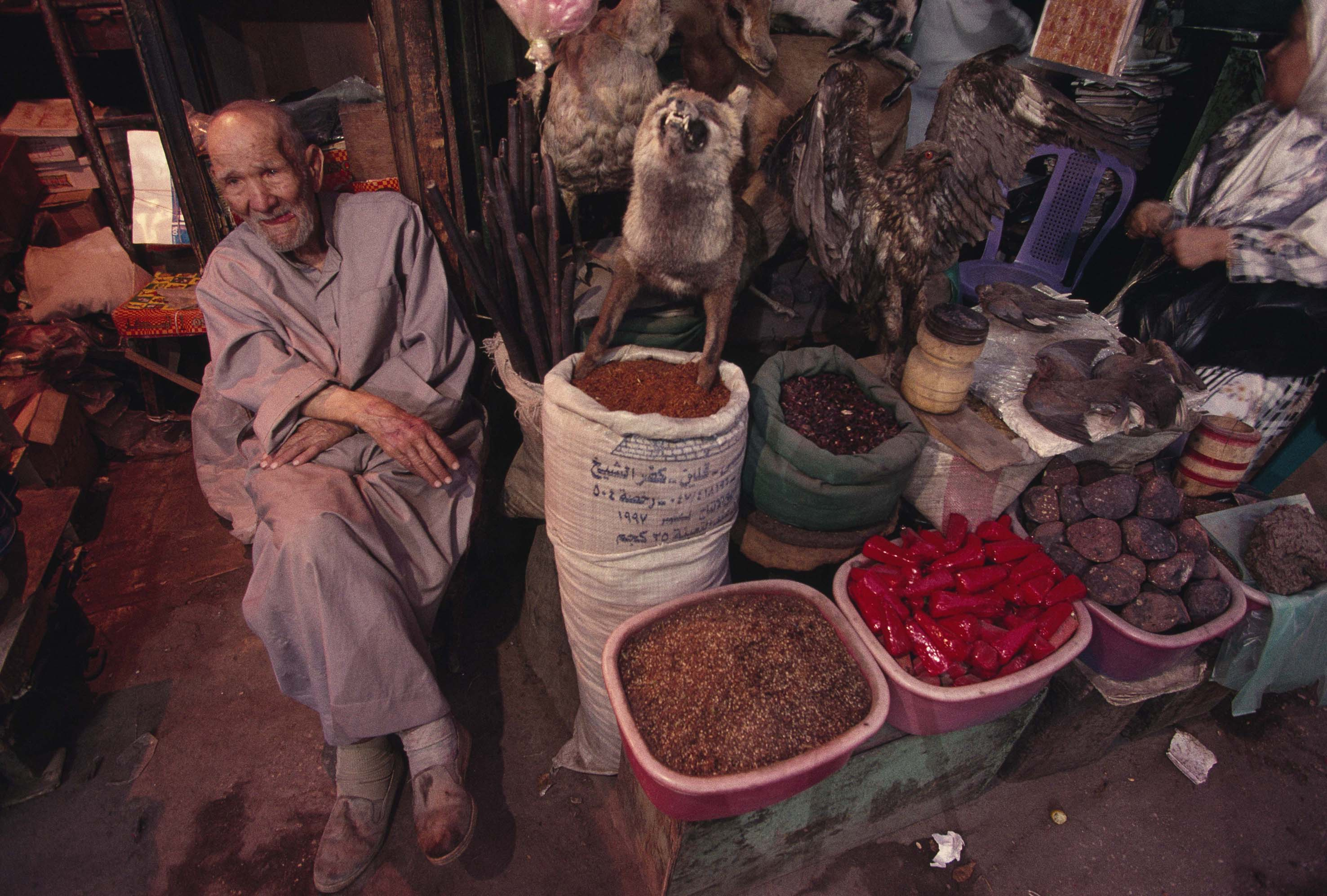 A local vendor sells the items for whatever ails you at the Khan el Kalili Baza ar.  He's got herbs, spices, and many other things, including stuffed and mount ed animals.