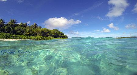 Libro da leggere – Francesca Borri Ma quale paradiso ? – Non andiamo alle Maldive !